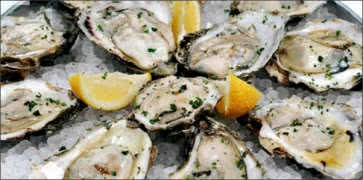 Oysters on Ice with Lemon Wedges