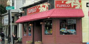 Tupelo in Cambridge